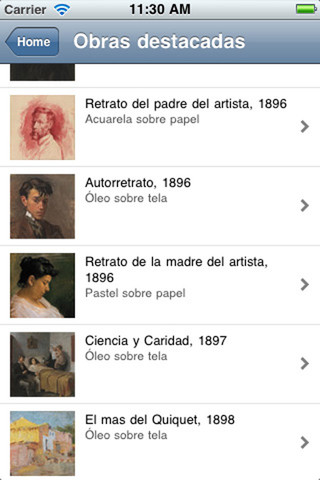 Application of the Museu Picasso